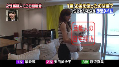 安田美沙子の自宅リビング006