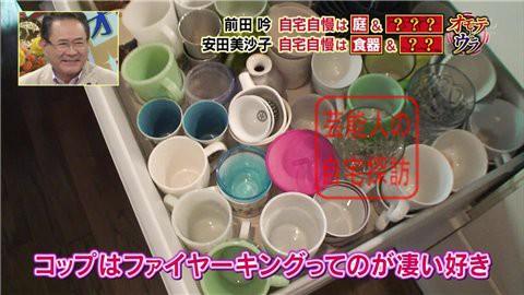 安田美沙子の自宅006