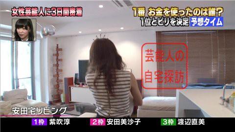安田美沙子の自宅リビング004