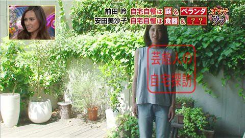 安田美沙子の自宅009