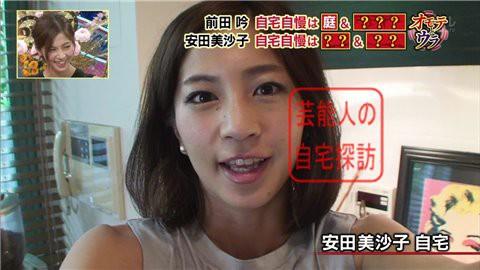 安田美沙子の自宅001