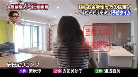 安田美沙子の自宅リビング003