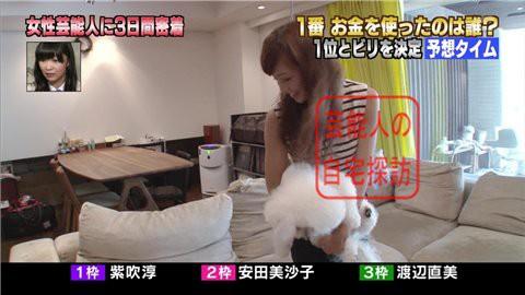 安田美沙子の自宅リビング007