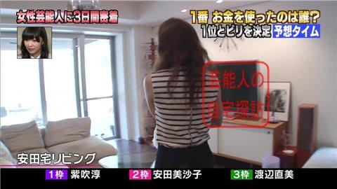 安田美沙子の自宅リビング005