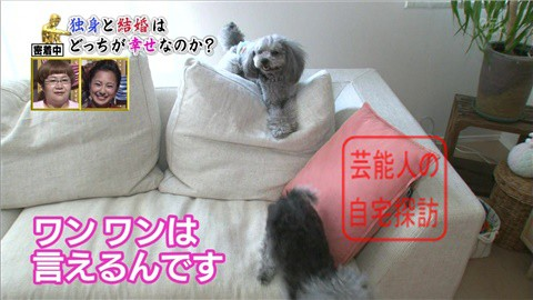 優木まおみのリッチな自宅マンション036