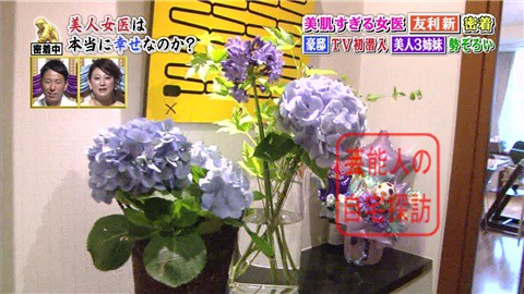 美人すぎる女医・友利新の自宅タワーマンション009