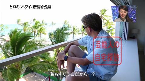 ヒロミ・ハワイの別荘028
