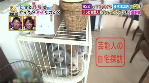 優木まおみのリッチな自宅マンション022