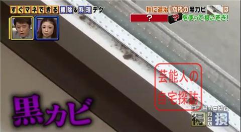 小倉優子の豪華マンション032