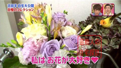 【大ブレイクしても】女優・吉田羊が築45年の自宅&コレクションを大公開【画像あり】013