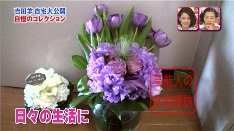 【大ブレイクしても】女優・吉田羊が築45年の自宅&コレクションを大公開【画像あり】016