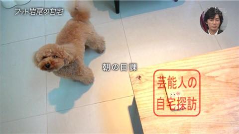 【愛犬との独身生活】フットボールアワー岩尾が素敵すぎる自宅を公開【画像あり】009