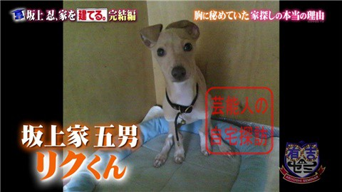【夢の新居ついに完成】坂上忍、家を建てる250