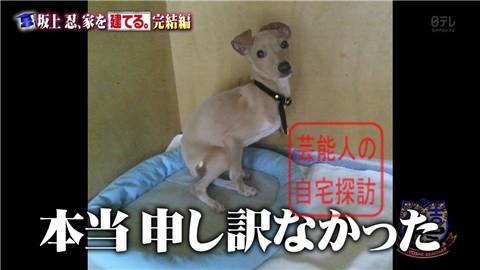 【夢の新居ついに完成】坂上忍、家を建てる260