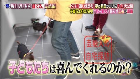 【夢の新居ついに完成】坂上忍、家を建てる171