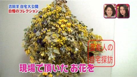 【大ブレイクしても】女優・吉田羊が築45年の自宅&コレクションを大公開【画像あり】015