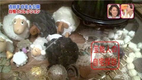 【大ブレイクしても】女優・吉田羊が築45年の自宅&コレクションを大公開【画像あり】012