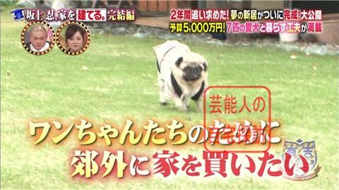【夢の新居ついに完成】坂上忍、家を建てる007