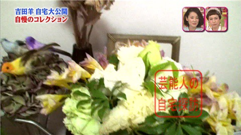 【大ブレイクしても】女優・吉田羊が築45年の自宅&コレクションを大公開【画像あり】014