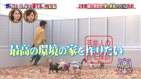 【夢の新居ついに完成】坂上忍、家を建てる264