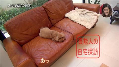 【愛犬との独身生活】フットボールアワー岩尾が素敵すぎる自宅を公開【画像あり】007