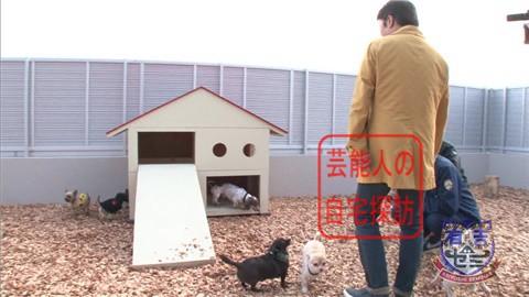 【夢の新居ついに完成】坂上忍、家を建てる233