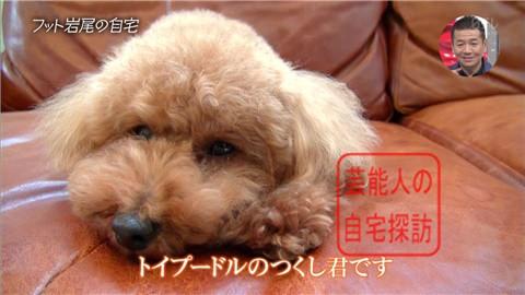 【愛犬との独身生活】フットボールアワー岩尾が素敵すぎる自宅を公開【画像あり】008