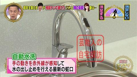 【相談なしに】東MAXが安めぐみのため、自由が丘に2億円豪邸建てる【画像あり】036