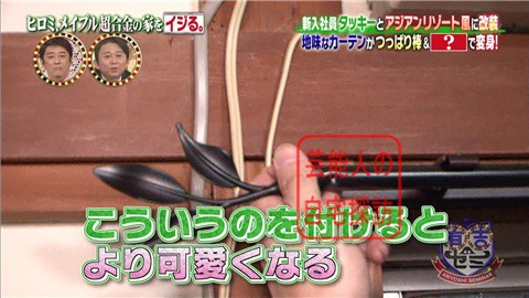 ヒロミ&タッキーがメイプル超合金の家を劇的改造【画像あり】061