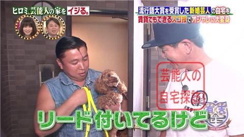 【劇的改造】ヒロミ、スギちゃんの家をワイルドにイジる。【画像あり】004